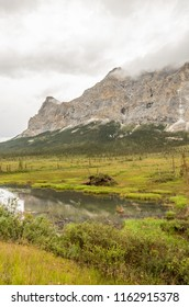 A palsas emerges from the permafrost beside a wetland pond at the base of Sukakpak Mountain. Dalton Highway, Alaska.