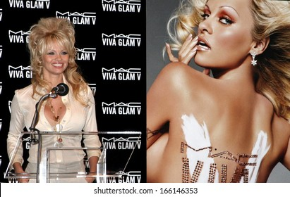 Pamela Anderson at the press conference for MAC Cosmetics VIVA GLAM Lipstick Ad Campaign, CHRISTIE'S ROCKEFELLER PLAZA, New York, NY, March 31, 2005