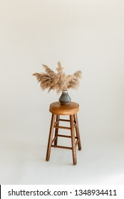 Pampas grass on a stool in a white studio