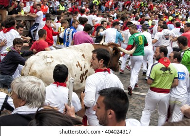 PAMPLONA,SPAIN - July 11th 2015: some people and Tame bullock running of the bulls