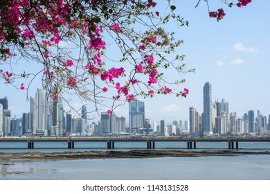 Panama City, Panama – Feb 26, 2016: Panama City skycrappers as seen from the Old City.
