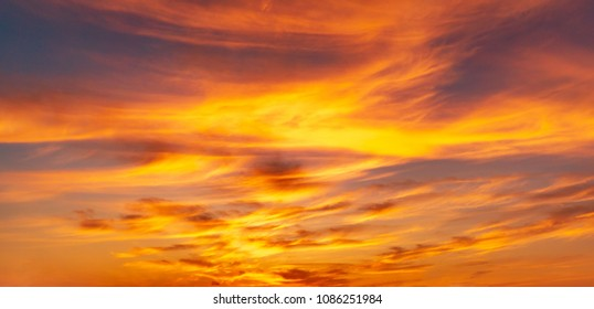 Panarama twilight sky full with cirrus clouds shapr lookling a fire at golden hour time ,Nature background