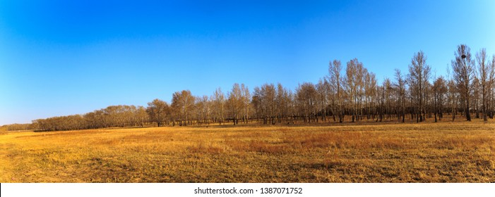 Panarama View of The grassland in early spring, grassland in Zhang Bei grassland, Heibei, China