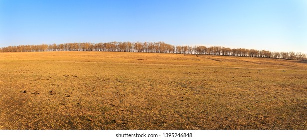 Panarama View of The grassland in early spring, panorama view of grassland in Zhang Bei grassland, Heibei, China