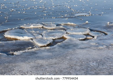Pancake ice formation in the water, surrounded by ice. Latvia