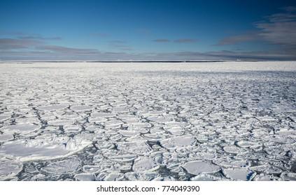 Pancake ice formations near South Sandwich Islands, Southern Ocean