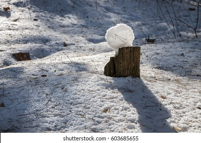 Pancake man of snow on a stump in a winter forest