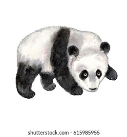 Panda on white background. Watercolor animal silhouette sketch. Wildlife art illustrations. Vintage graphic for fabric, postcard, greeting card, book