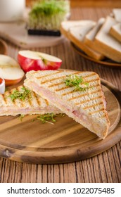 Panini cheese ham toast, fresh apple, back to shool sandwich, food photography