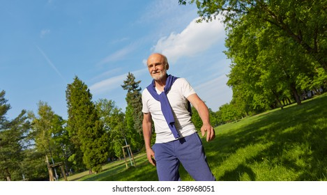 Panorama with active senior man in a summer park
