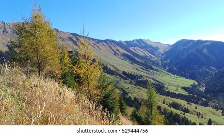 Panorama of the Alps of Bavaria in autumn