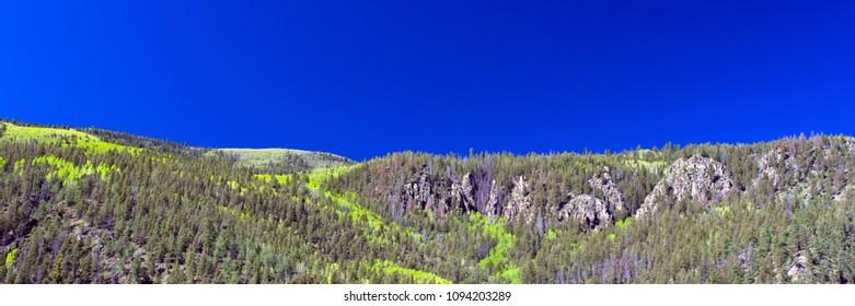Panorama of the aspens  leafing out in spring along the palisades, the Rio Grande, and the road to Creede in the San Juan Mountains of southern Colorado