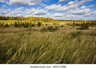 Panorama of autumn forest and field on a sunny day with clouds.