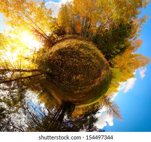 Panorama of an autumn forest in a form of little planet