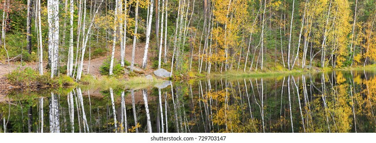Panorama of autumn forest full of colors at lake shore