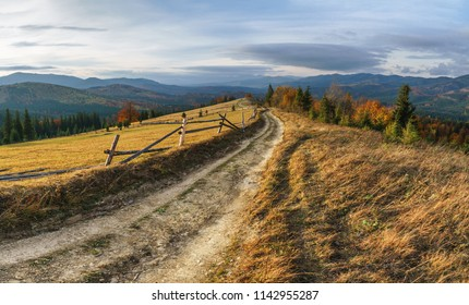 Panorama of autumn landscape with a dirt road on hill top.