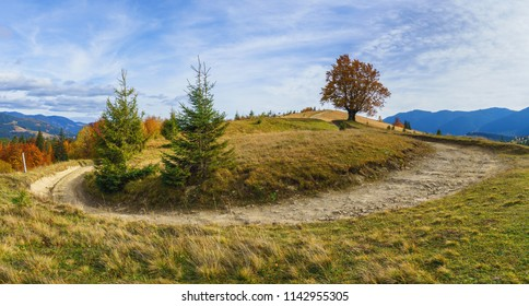 Panorama of autumn landscape with a dirt road rising up the hill.