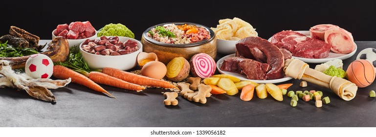 Panorama banner with assorted fresh foods for preparing healthy raw barf for cats and dogs with vegetables, oats, offal, organs, stomach, meat, toys and a bone in a colorful display