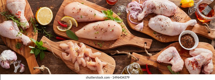 Panorama banner of raw chicken portions for cooking and barbecuing with skinless breasts and diced strips for goulash or stir fry with legs and wings with skin viewed from above with fresh seasoning - Shutterstock ID 1496434379
