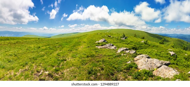 panorama of beautiful carpathian alpine meadows. wonderful summer landscape. fluffy clouds on the blue sky. stones on the edge of a hill