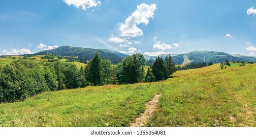 panorama of beautiful countryside in mountains. trees on a grassy meadow on a sunny july day. ridge in the distance