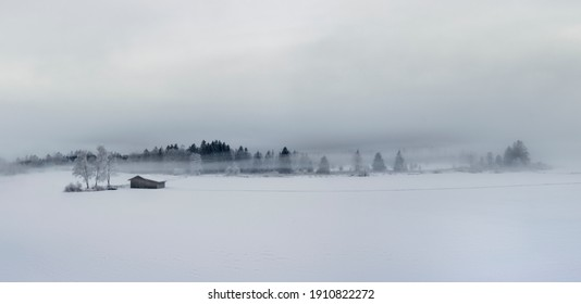 Panorama of beautiful foggy winter landscape with frozen trees and wooden house