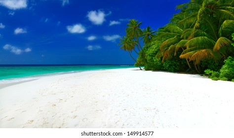 Panorama of beautiful tropical beach with white sand, palm trees, blue sky and white clouds on Maldives
