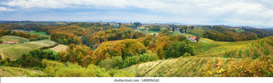 Panorama of Beautiful vineyards landscape of Jeruzalem on Slovene Hills in Ljutomer. Northeastern Slovenia