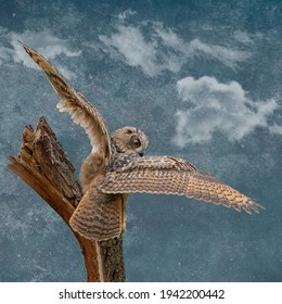 Panorama of an big Eagle Owl. Sit on a stump. Spread the wings for takeoff. Bird looks back, the orange eyes stare at you. Beautiful blue sky in the background. Composite photo. Cover, social media or