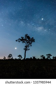 Panorama blue night sky milky way and star on dark background.Universe filled with stars, nebula and galaxy with noise and grain.Photo by long exposure and select white balance.Dark night sky.