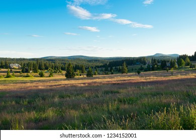 Panorama of Bohemian Forest in the springtime. Czech Republic.
