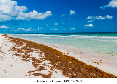 panorama of the Caribbean sea in Mexico Riviera Maya Cancun