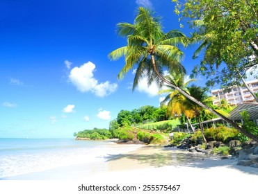 Panorama of Caribbean Sea as seen from Saint Lucia