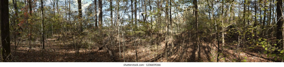 Panorama of the Civil War Earthworks at Tallahatchie Crossing in Mississippi