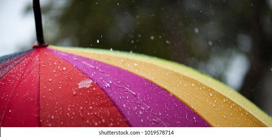 The panorama of Close-up  umbrella in rainbow colors in rainy autumn day, blur focus
