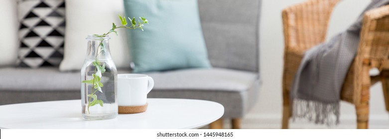 Panorama of cozy living room with white coffee table in scandinavian style