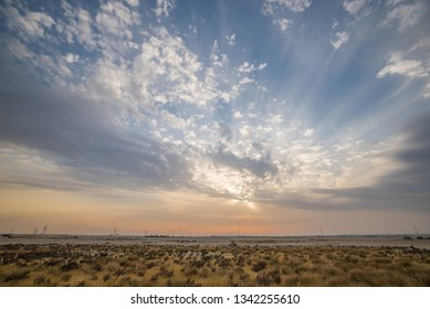 Panorama of a desert with dry grass, bushes and cloudy sky.