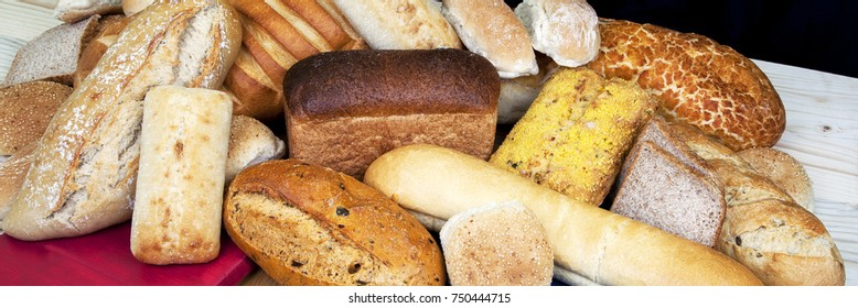 Panorama of different types / variety of bread loaves.