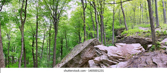 Panorama of the dolomitic limestone and shale rock formations on the southern end of the Niagara Escarpment along the Bruce Trail, St. Catharines, Ontario, area in the Woodend Conservation Area.