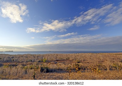 Panorama from Dragon Hill on Santa Cruz Island in the Galapagos