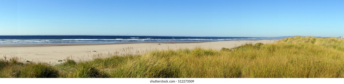 Panorama, Dune grass on sandy beach, Seaside, Oregon coast