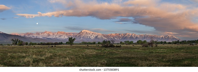 panorama of the eastern Sierra Nevada Mountains from Bishop California at sunrise with the moon setting