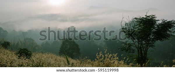 Panorama ,Fields of grass during the morning sunrise in Pai District, Mae Hong Son Province ,Thailand