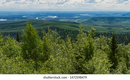 panorama of the forest of the chena river recreation area from chena hot springs looking toward Fairbanks