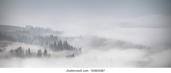 Panorama of forest covered by low clouds. Autumn rain and fog on the mountain hills. Misty fall woodland.