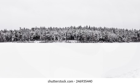 panorama of a forest covered by snow by a small lake in sweden