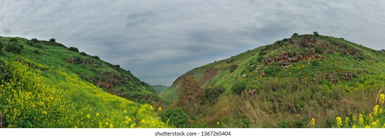 panorama of the Golan heights in spring in Israel