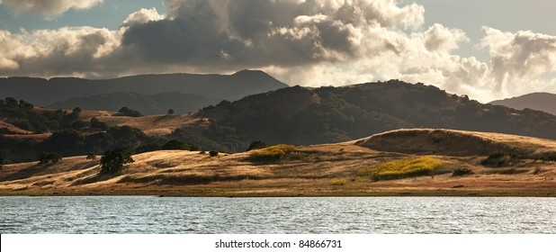 Panorama in of golden fields, mustard flowers, and the Calero Reservoir in summer in the Santa Cruz Mountains of California