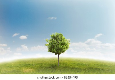 Panorama of green field with a tree on blue sky background