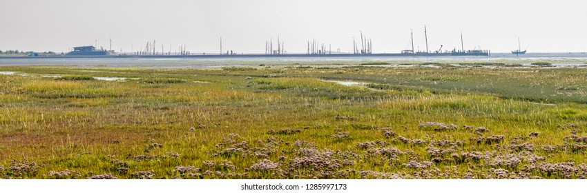 Panorama of harbour, salt marsh and tidal flat at low tide of Wadden Sea on  Schiermonnikoog, Netherlands